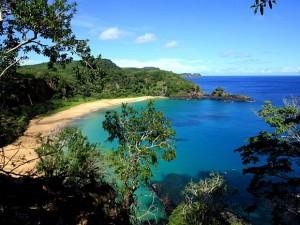 Paradis brésilien : connaissez les merveilles de Fernando de Noronha